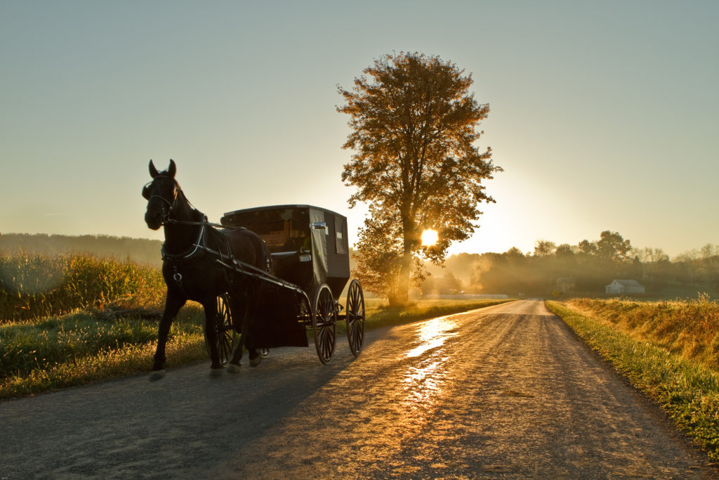 affordable health care also cares for the Amish community.